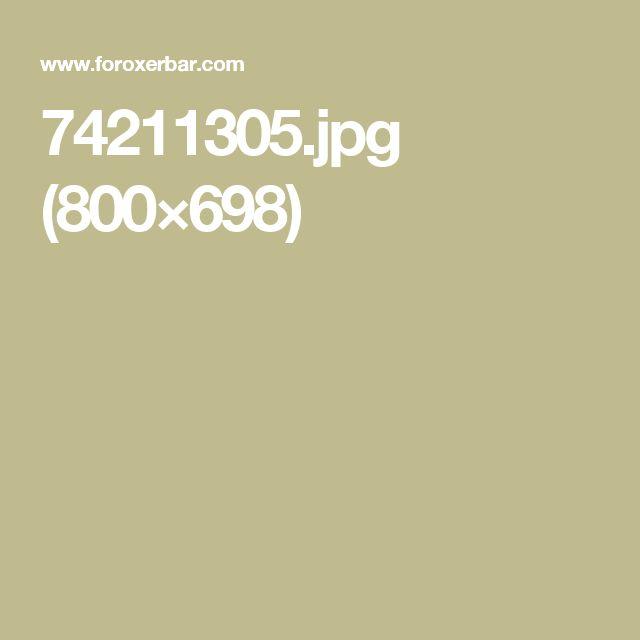 74211305.jpg (800×698)
