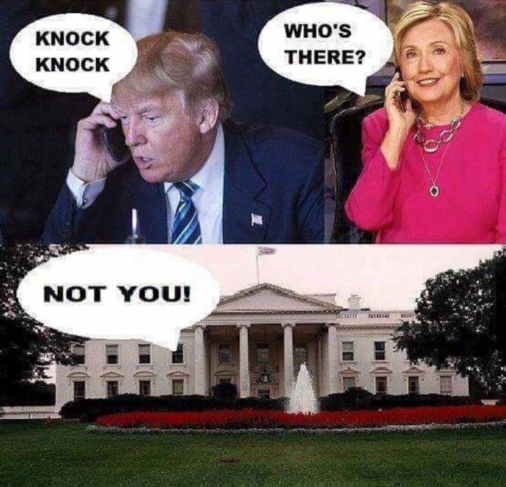 Oh...Poor Hilary... she lost to a orange with a cat on its head. Im so sorry sweet heart