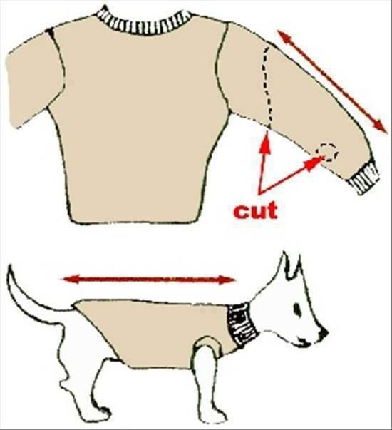 For additional tutorials, including for larger dogs, see http://www.frugal-cafe.com/pets/articles/diy-how-to-make-dog-clothes-fashions-recycled-clothing.html