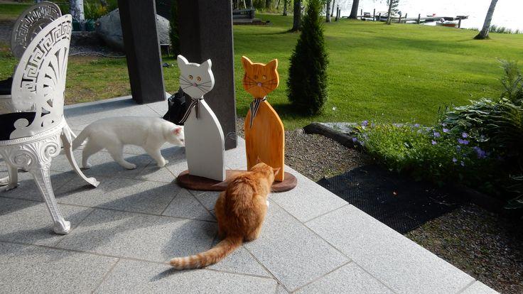 Puukissat ja oikeat kissat