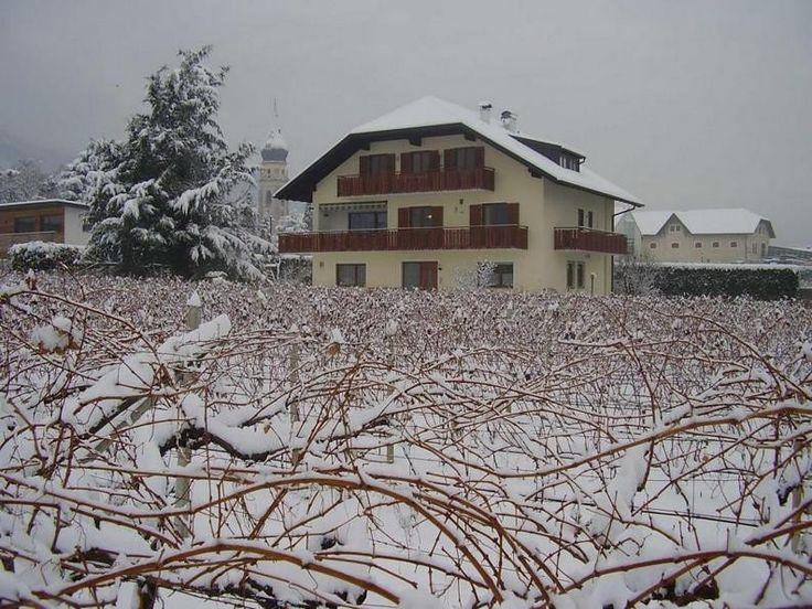 Der Obst- und Weinbauernhof ist ein kleines Paradies, in sonniger und ruhiger Lage, eingebettet in den Weinbergen von St. Pauls.
