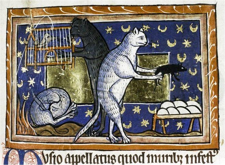 Bodleian Library, England 13th century, MS. Bodl. 764, fol. 51r