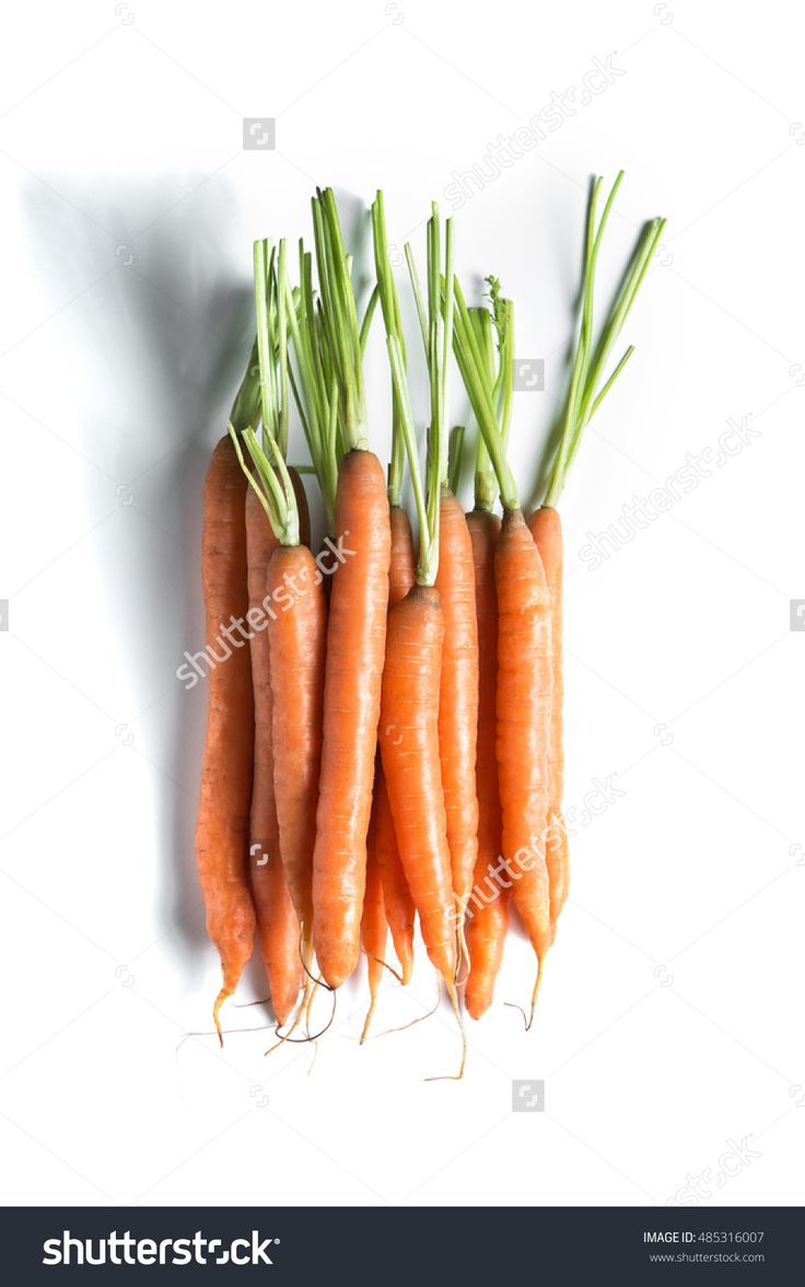 Bunch Of Fresh Carrots Isolated On White Background Top View. Banner And Copy Space For Text. Web-Design Studio Vertical Shot. Concept Of Healthy Lifestyle. Stock Photo 485316007 : Shutterstock