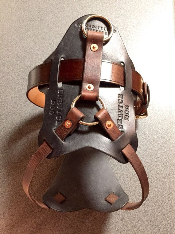 Leather service dog pulling harness/vest. Made from premium veg tanned leather. All three straps connecting the chest plate are adjustable to get just