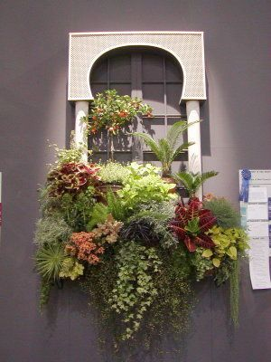 225 best images about window boxes on pinterest window - Winter flowers for balcony ...