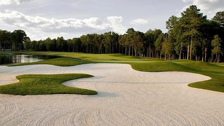 Best Public Golf Courses in Northeast Golfbanen