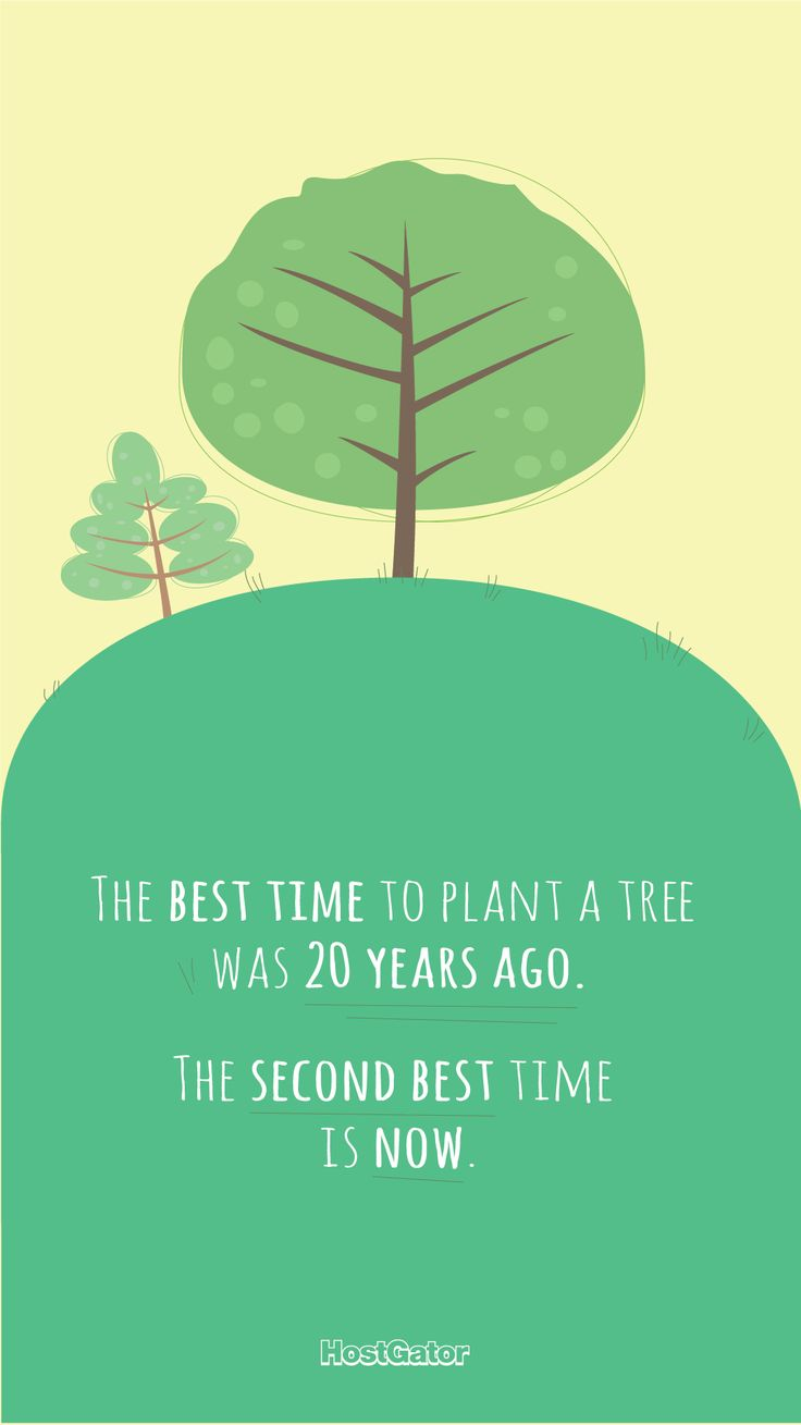 """The best time to plant a tree is now..."