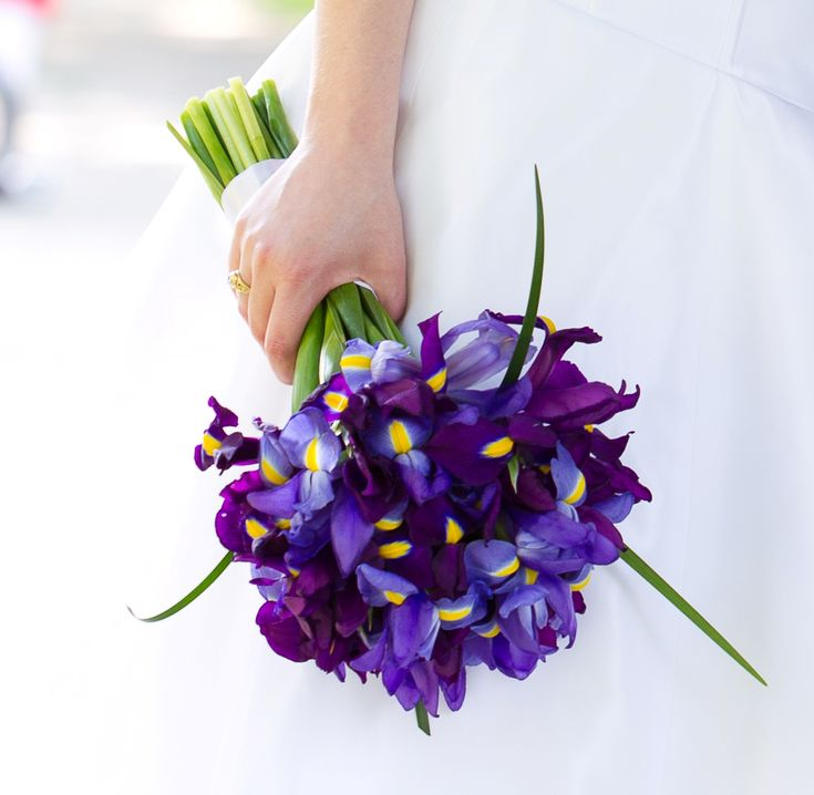 My own wedding bouquet, all blue and purple irises (I have a thing for single flower-type bouquets), which did not enjoy the 93 degree heat on June 4