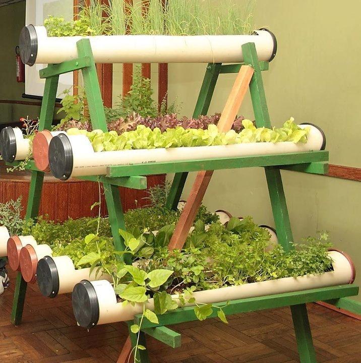 horta em canos de  PVC