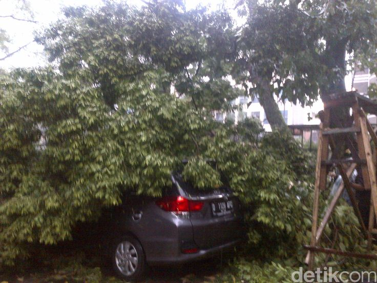Pohon Timpa 4 Mobil di Kantor Bina Marga Jabar Akibat Hujan Badai