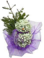 СНЕГОВИК С ЁЛОЧКОЙ  Милый и немного застенчивый снеговичок из невесомой гипсофилы, принесёт к вам в дом праздник. А миниатюрную ёлочку, которую он захватил с собой, можно украсить праздничными игрушками или сладкими конфетами, на радость детям.