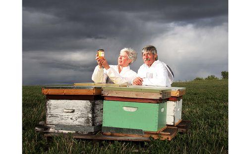 Chinook honey company Calgary