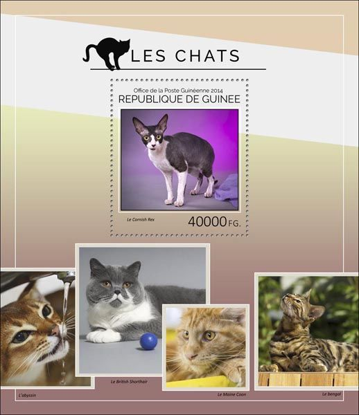 Post stamp Guinea GU 14405 bDomestic cats (The Cornish Rex)