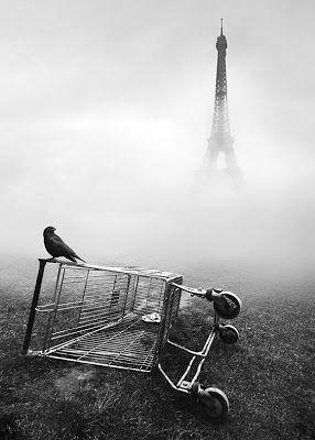 AttEnTiOn leS vÉLoS DaNs mA têTe ! : CE N'EST PAS SI GRAVE. Et voilà, et voilà... Que reste-il à manger ? Un volatile encore vivant. J'hésite encore à le plumer pour le rôtir comme un poulet... nos discussions étaient sincères... je risquerais de m'ennuyer et mange-t-on un confident ? Nous regarderons la tour Eiffel s'évaporer de bas en haut, en suçant le fil de fer d'un caddie mort imbibé d'eau...