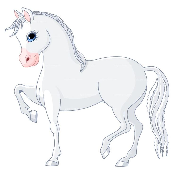 images of horse drawings   CLIPART WHITE HORSE - CARTOON STYLE   Royalty free vector design