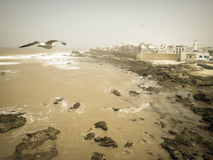 Surrealism - Essaouira