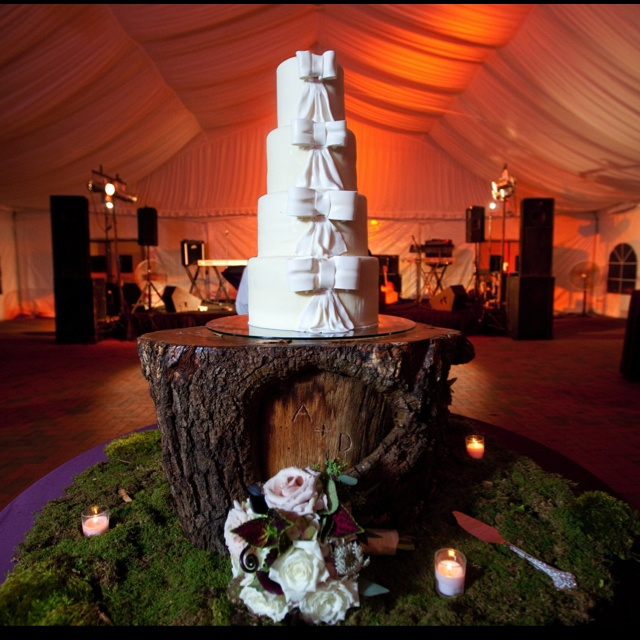 Cake stand stump from our backyard!: Wedding Ideas, Cake Stands, Backyard, Stand Stump