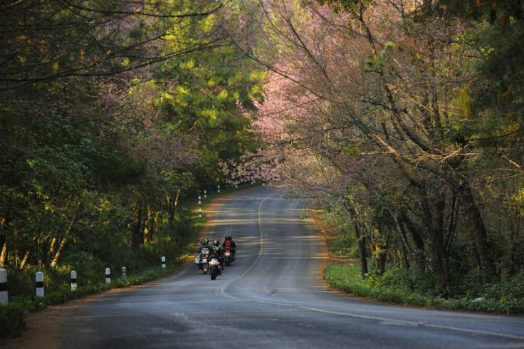 Places to visit near Ahmedabad for long breaks