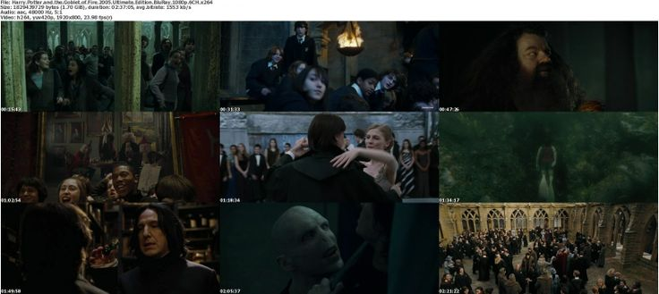 Harry Potter And The Goblet Of Fire Movie   Harry Potter and the Goblet of Fire 2005 Ultimate Edition BluRay 1080p ...