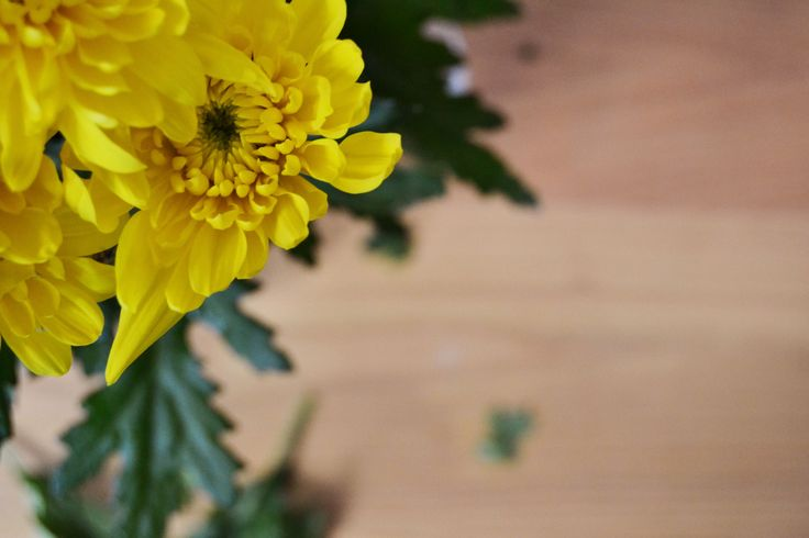 Flores sobre la mesa. Mesa de castaño NORTHERN SONS