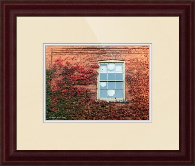 """Autumn Ivy"" by Michael McClure, Burlington // Late afternoon autumn baths this red ivy in its golden hue. This is one of my most popular images. Shot in St. Jacobs Ontario.You are welcome to pick and choose your own print size, frame, matte, and glass. And don't forget you can even order a print alone or a canvass wrap. // Imagekind.com -- Buy stunning fine art prints, framed prints and canvas prints directly from independent working artists and photographers."