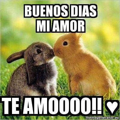 Encuentra los mejores Memes de Buenos Días Amor para compartir con tus amigos y familiares y pasar un buen rato...los memes más chistosos...