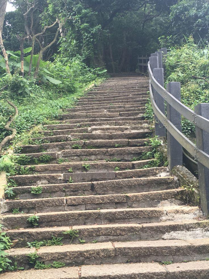 Elephant trail stairs Taipei Taiwan
