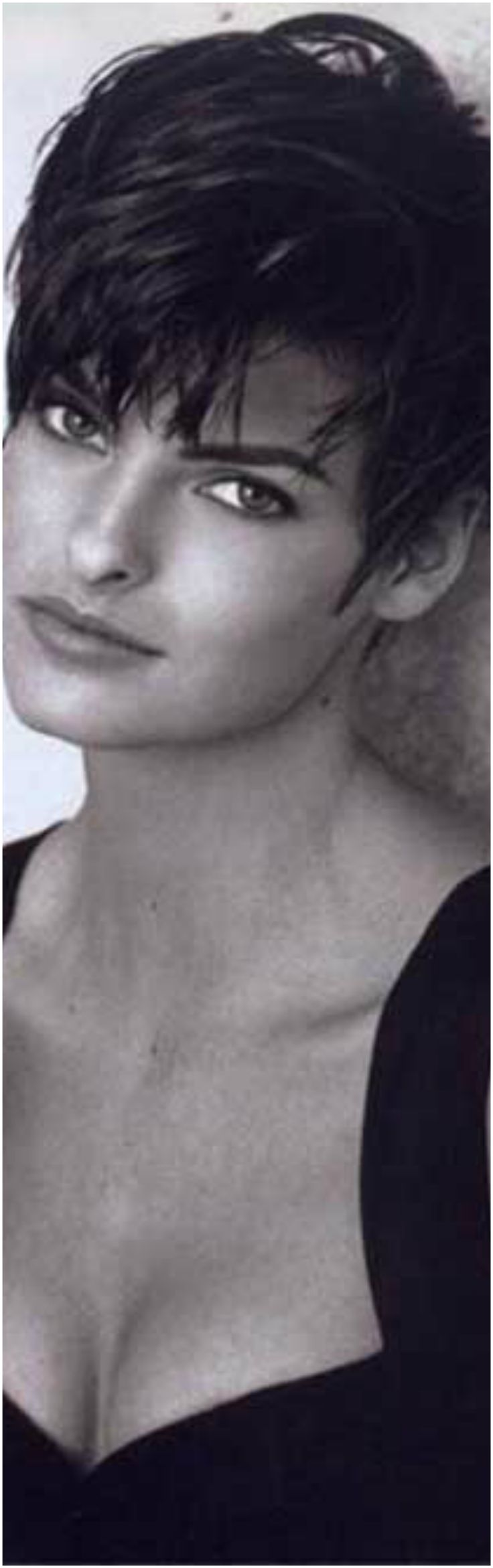 best Pixie hairstyles images on Pinterest  Pixie haircuts Hair