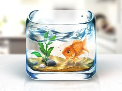 Fishbowl_iosDesign Inspiration, Application Design, Web Design, Ios App, App Icons, Blog Design, Icons Design, Design Blog, Ios Icons