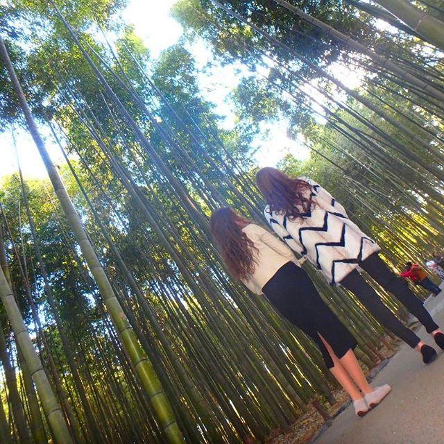 【kita.haru】さんのInstagramをピンしています。 《. . . 1泊2日の温泉旅行♨✨ 2日目はSNOOPY茶屋🍵☞ 竹林🌲 SNOOPY本間に可愛すぎて食べるの勿体ないくらいやった😂💓 竹林は初日行こうと思ってて場所分からんくて断念してたけどよーやく行けた💃💜 1泊2日って一瞬過ぎて滋賀帰ってきて一気に現実に戻った😔💧 月1で旅行行きたいなぁ~~🙄👐🏽♥️ 菫2日間ありがとう😳💛 まだ一緒に居てるけど😛😛😛 . . . #京都 #Kyoto #嵐山 #森林 #arabicacoffee  #スヌーピーカフェ #茶屋 #OLIMPUS #tg870  #tg870のある生活  #UGG #モカシン #instagram #instafashion  #instapic #instagood  #l4l #like4like #followme #フェンダー越しの私の世界  #カメラ女子 #BFF #高身長女子  #お洒落な人と繋がりたい》