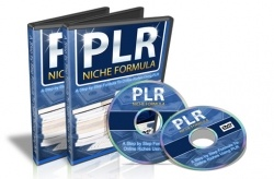This lense is about buying and using Wordpress PLR  products to make money online.    Learn what and how Wordpress PLR content can help boost your...
