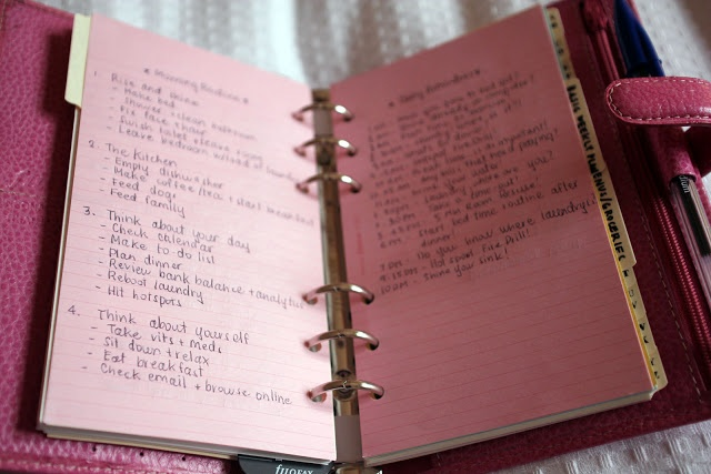 """""""Anna Saccone: How I Keep Organised!"""" She incorporates the FlyLady system into her filofax - something that I want to do but didn't know how until I saw Anna's filofax. I can't wait to get started on mine."""