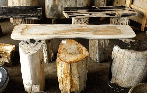 IndoGemstone Petrified Wood
