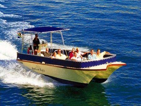 Boat Trips Simon's Town