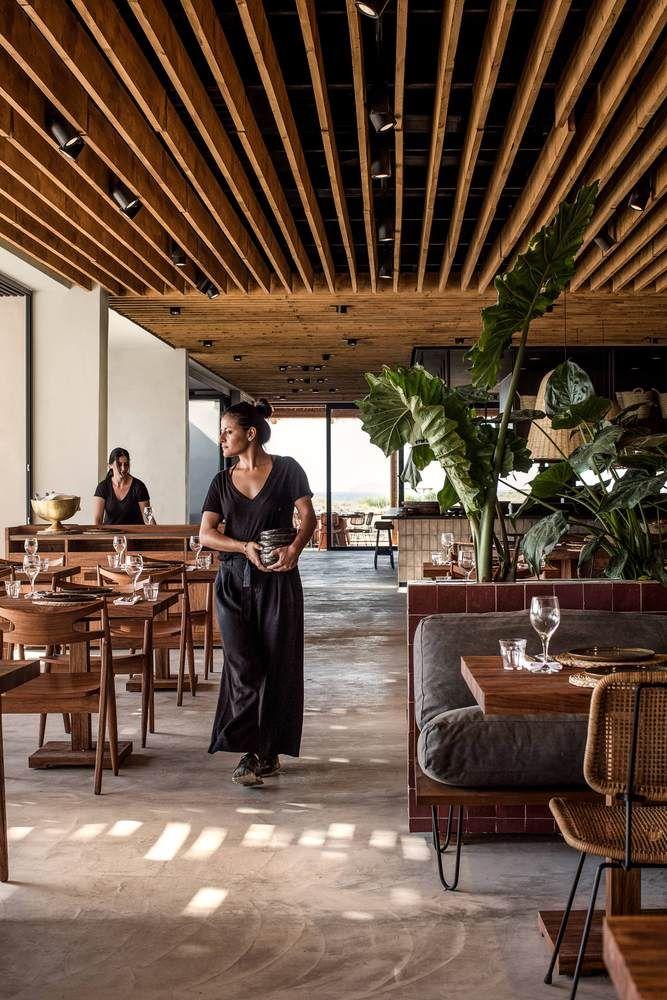 Gallery of Casa Cook Kos Hotel / Mastrominas ARChitecture - 15