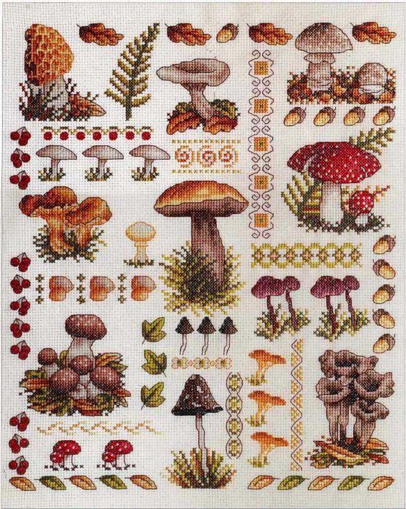 Mushroom Sampler (Anchor) • 1/3 Project