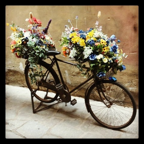 Beautiful Bike Tours and more www.florencetown.com