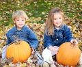 Where to Pick Pumpkins in the St. Louis Area