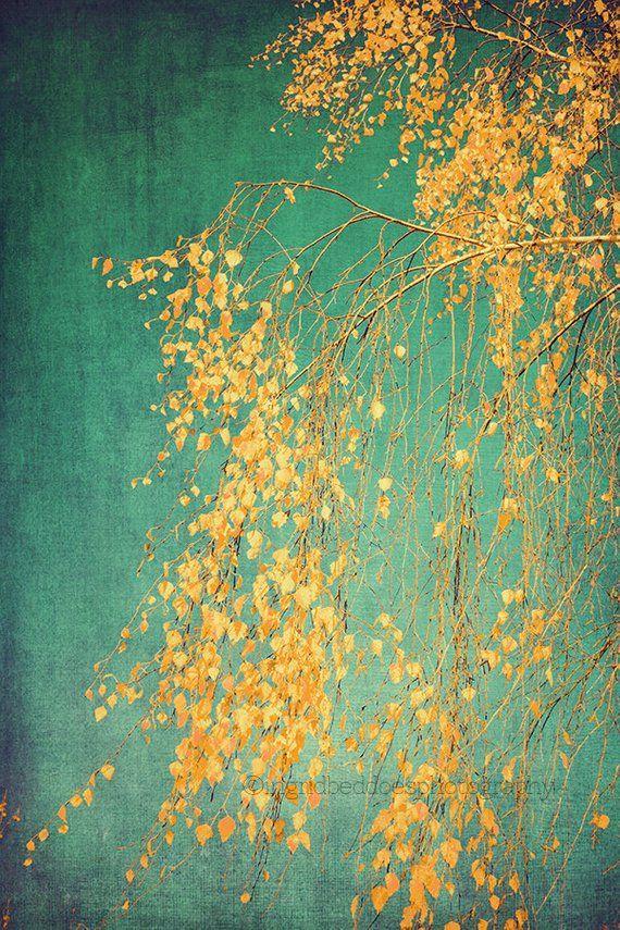 Großer Baum Druck, warme Herbst Farben, Smaragd grün, Wälder, Baum Fotografie, gelbes Blatt, Kunstdruck, rustikale Wohnkultur, Wand-Dekor von Ingri…