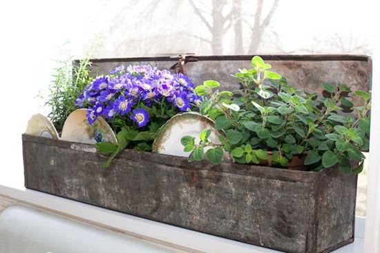 Herbs in a Zinc Box w Vintage Plates - Carol Spinski Blog rs550