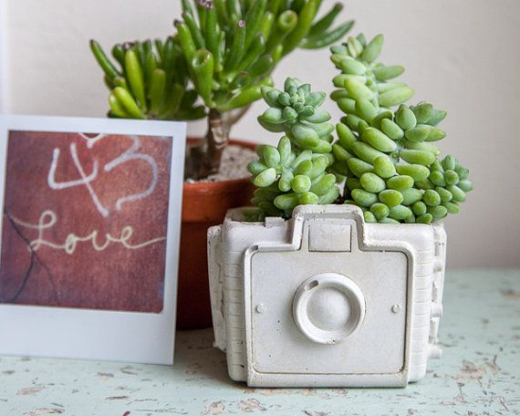 Camera Planter cement retro home decor hipster by brooklynglobal
