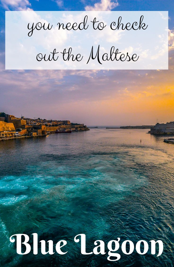 You should check out the Blue Lagoon Malta  | Malta travel | travel in Malta | Malta blue lagoon | Europe | travel with kids | kids world travel guide | travel with a toddler | travel | wanderlust | #malta #travel