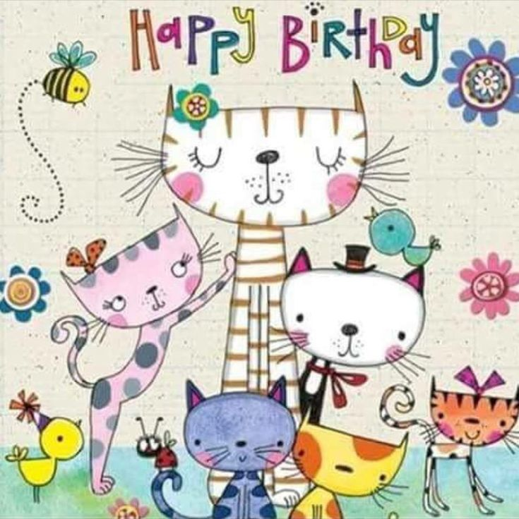 Фото приколы, открытки кошечки с днем рождения