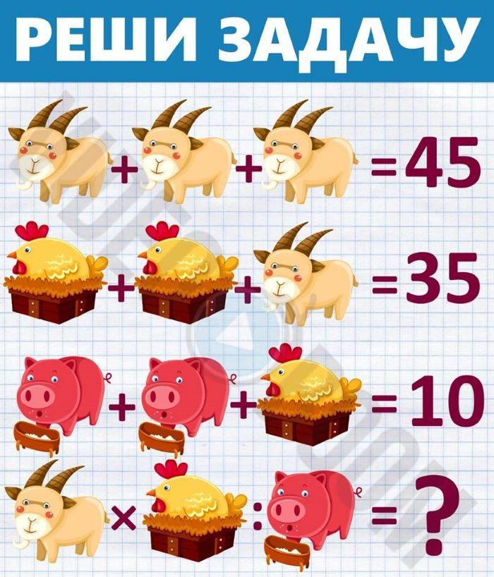 Китайские задачи в картинках свиньи с ответами