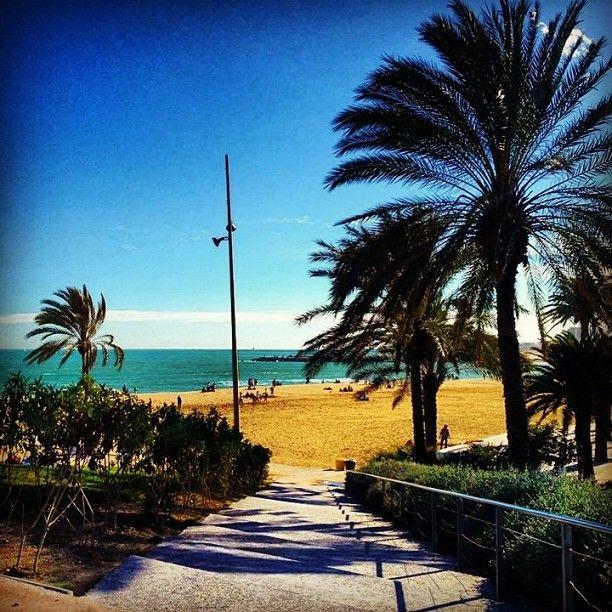 The lovely Barcelona beach