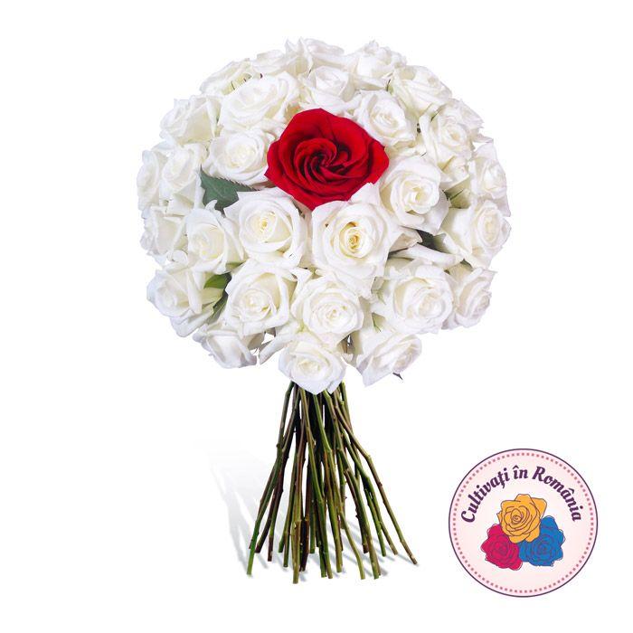 Buchet 30 trandafiri albi Akito si un trandafir rosu