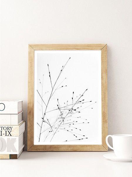 Die schwarz-weißen filigranen Gräser sind auf hochwertigem FineArt Papier gedruckt und bieten gerahmt oder als Poster eine schlichte Dekoration für dein Zuhause.   Ein weißer Rand von 1cm umrahmt...