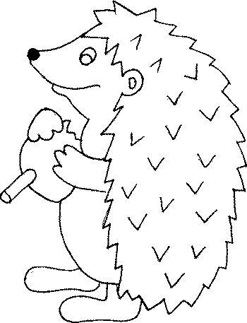 hedgehog coloring pages hibernation hibernating animal pinterest. Black Bedroom Furniture Sets. Home Design Ideas