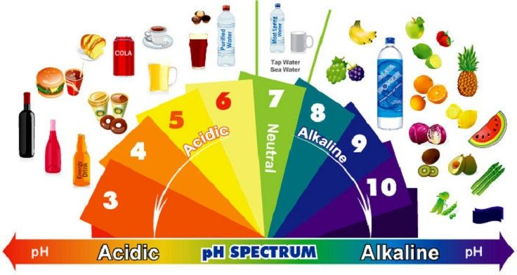 Your body needs to be slightly alkaline to be at its healthiest. Your cells, the chemical reactions inside them, your beneficial bacteria in your gut
