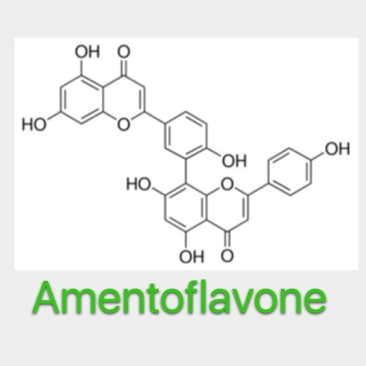 This molecule was a fan request and it's starting to show up in a lot of newer products. It's called amentoflavone and it has some really interesting properties. It's found in a number of botanical species such as ginkgo biloba and St. John's wort. With respect to bodybuilding amentoflavone acts as a vasodilator. It's mechanism of action however is very unique. It acts as a phosphodiesterase inhibitor specifically inhibiting the breakdown of cyclic adenosine monophosphate(cAMP). cAMP is a…